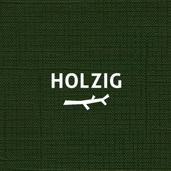 A5033 :: Holzig :: Holzig 1st Album (CD, available)